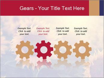0000075467 PowerPoint Template - Slide 48