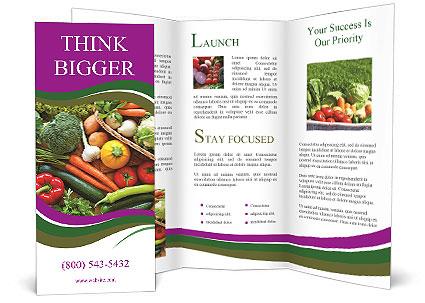 0000075480 Brochure Template