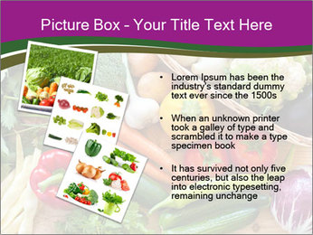 0000075480 PowerPoint Template - Slide 17