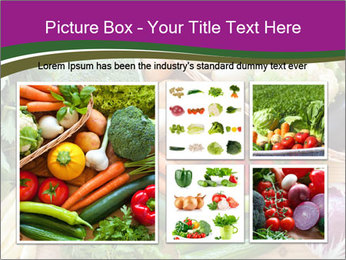 0000075480 PowerPoint Template - Slide 19