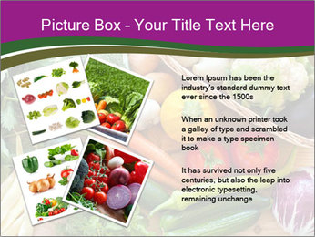 0000075480 PowerPoint Template - Slide 23