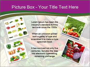 0000075480 PowerPoint Templates - Slide 24