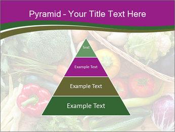 0000075480 PowerPoint Templates - Slide 30