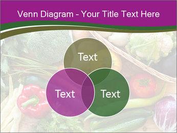 0000075480 PowerPoint Templates - Slide 33