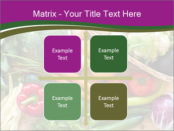 0000075480 PowerPoint Templates - Slide 37