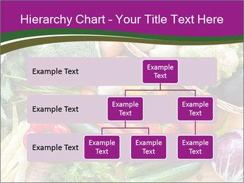 0000075480 PowerPoint Templates - Slide 67