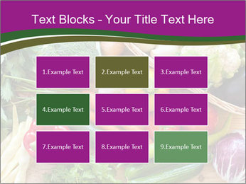 0000075480 PowerPoint Templates - Slide 68