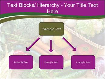0000075480 PowerPoint Templates - Slide 69