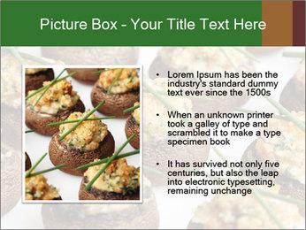 0000075491 PowerPoint Template - Slide 13