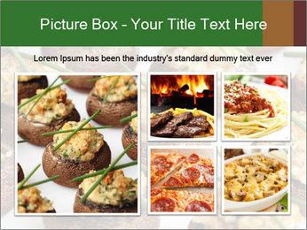 0000075491 PowerPoint Template - Slide 19