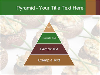 0000075491 PowerPoint Template - Slide 30