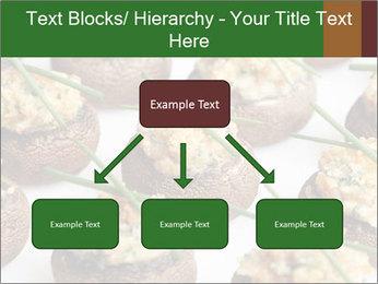 0000075491 PowerPoint Templates - Slide 69