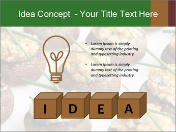 0000075491 PowerPoint Template - Slide 80