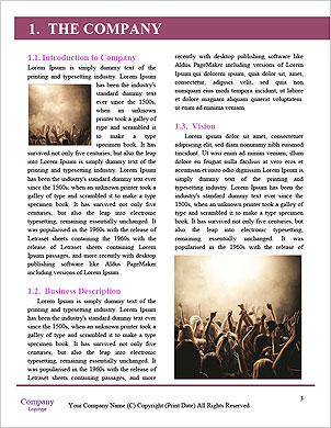 0000075495 Word Template - Page 3