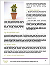 0000075515 Word Templates - Page 4
