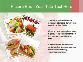 0000075529 PowerPoint Template - Slide 23