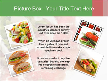 0000075529 PowerPoint Template - Slide 24