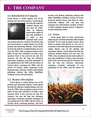 0000075539 Word Template - Page 3