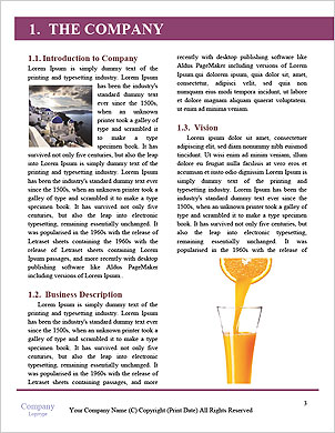 0000075543 Word Template - Page 3