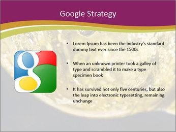 0000075558 PowerPoint Template - Slide 10