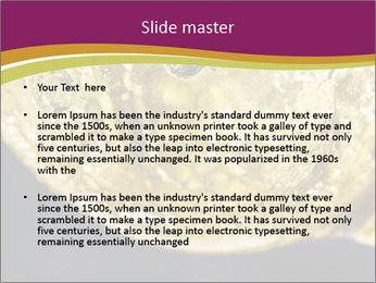 0000075558 PowerPoint Template - Slide 2