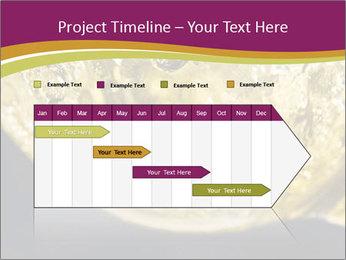 0000075558 PowerPoint Template - Slide 25