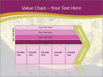 0000075558 PowerPoint Template - Slide 27