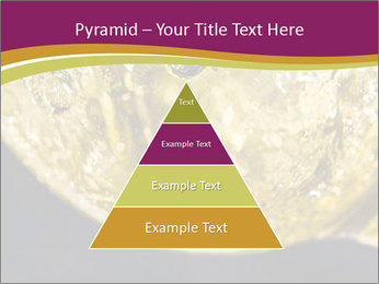 0000075558 PowerPoint Template - Slide 30