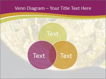 0000075558 PowerPoint Template - Slide 33
