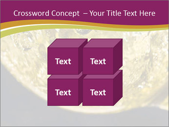 0000075558 PowerPoint Template - Slide 39