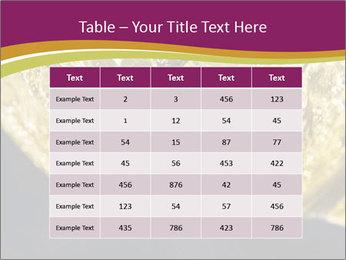 0000075558 PowerPoint Template - Slide 55