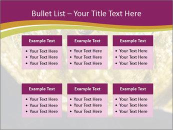0000075558 PowerPoint Template - Slide 56