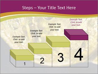 0000075558 PowerPoint Template - Slide 64