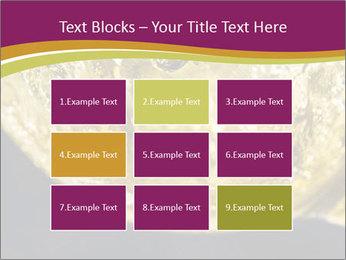 0000075558 PowerPoint Template - Slide 68
