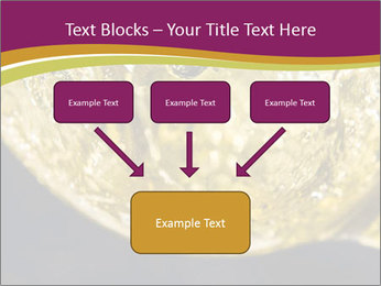 0000075558 PowerPoint Template - Slide 70