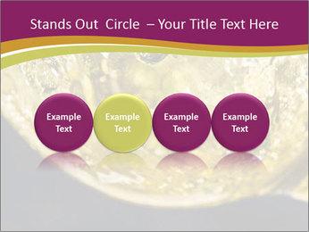 0000075558 PowerPoint Template - Slide 76