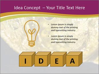 0000075558 PowerPoint Template - Slide 80