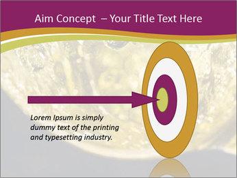 0000075558 PowerPoint Template - Slide 83