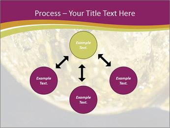 0000075558 PowerPoint Template - Slide 91