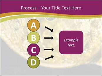 0000075558 PowerPoint Template - Slide 94