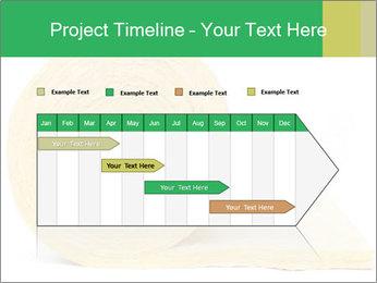 0000075559 PowerPoint Templates - Slide 25