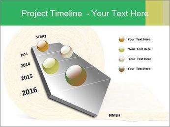 0000075559 PowerPoint Templates - Slide 26