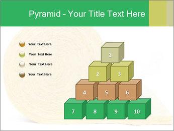 0000075559 PowerPoint Templates - Slide 31