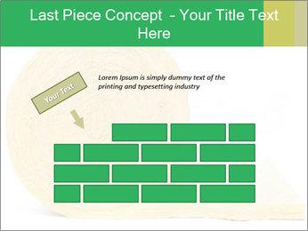 0000075559 PowerPoint Templates - Slide 46
