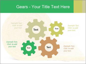 0000075559 PowerPoint Templates - Slide 47