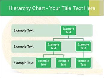 0000075559 PowerPoint Templates - Slide 67