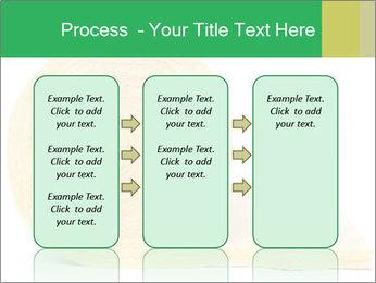 0000075559 PowerPoint Templates - Slide 86