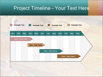 0000075560 PowerPoint Template - Slide 25