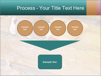 0000075560 PowerPoint Template - Slide 93