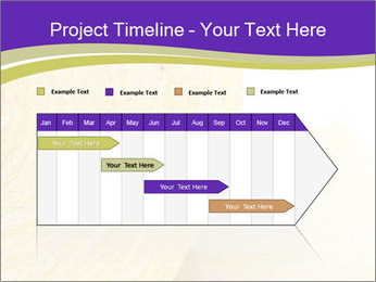 0000075561 PowerPoint Template - Slide 25